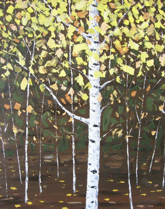 Solo Birch Tree-1